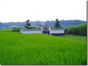 tomoyasu1