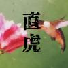 大河ドラマ「おんな城主 直虎」の【説明記事一覧】疑問に思った内容や人物を簡単に紹介!