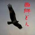 大河ドラマ西郷どん(せごどん)【あらすじ・ネタバレ・期待度まとめ】第6話~第10話